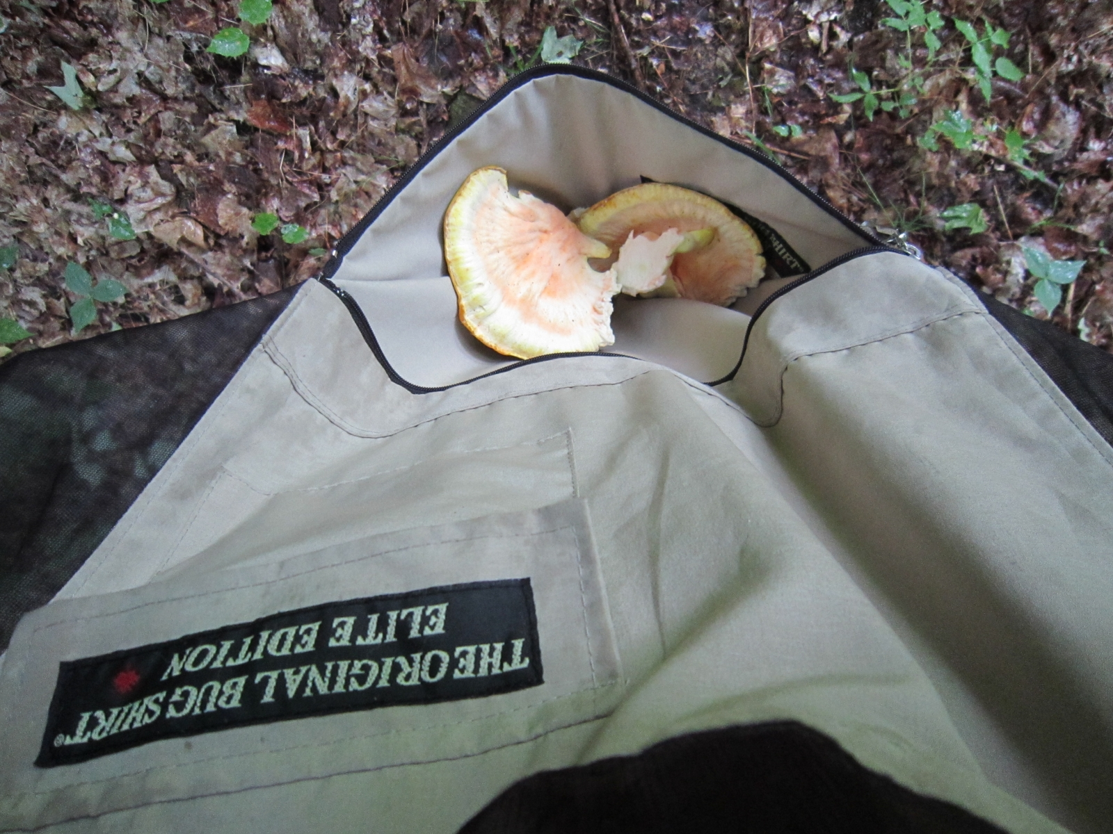 Front Pocket With Mushrooms